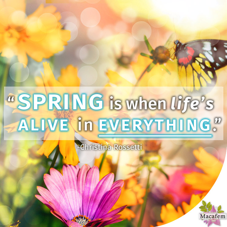 Spring is when life's alive in everything