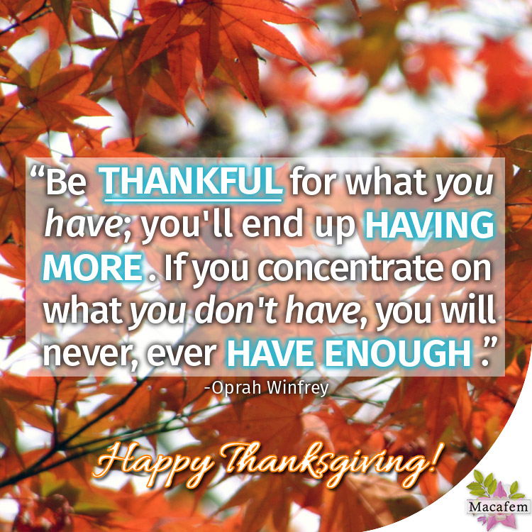 Happy Thanksgiving to you and your loved ones!