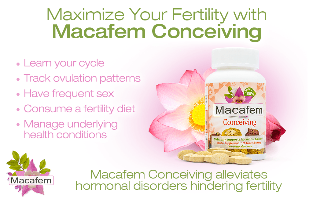 macafem maximize your fertility with macafem conceiving