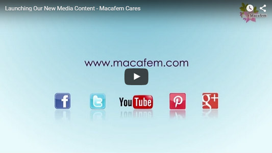 video launching new media content
